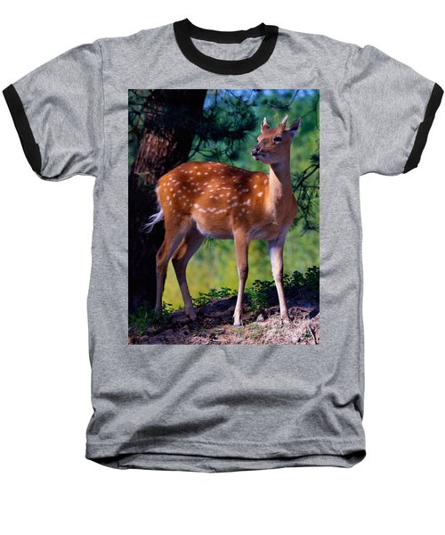 Deer In The Woods Baseball T-Shirt