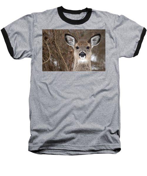 Deer Baseball T-Shirt by Jeannette Hunt