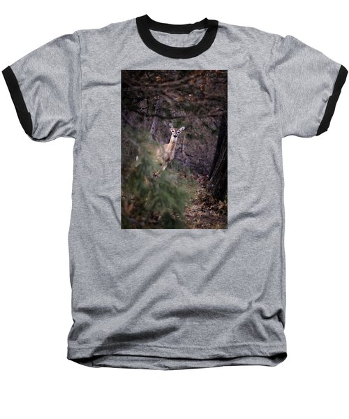 Deer's Stomping Grounds. Baseball T-Shirt