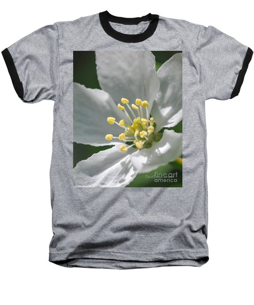 Delcate Widflower With Beautiful Stamen Baseball T-Shirt