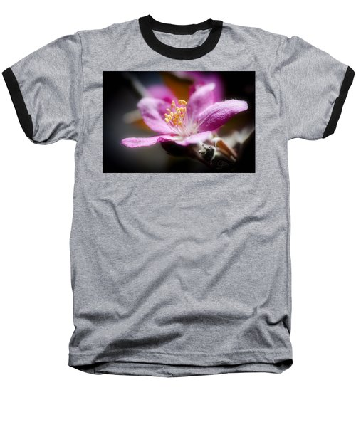 Delicate Glow Baseball T-Shirt by Greg Collins