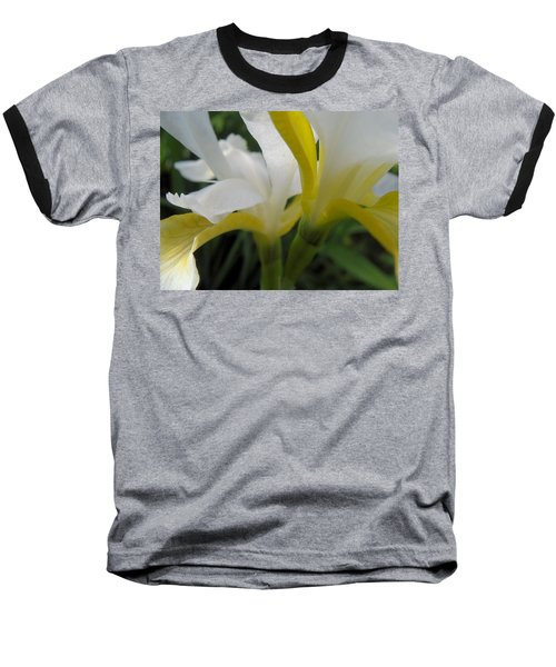 Baseball T-Shirt featuring the photograph Delicate Iris by Cheryl Hoyle