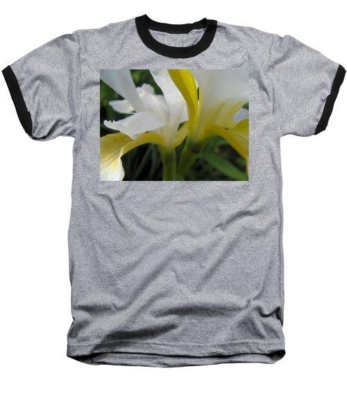 Delicate Iris Baseball T-Shirt by Cheryl Hoyle