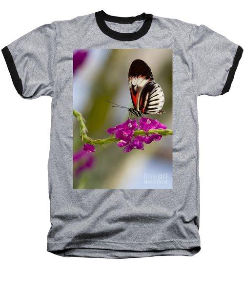 delicate Piano Key Butterfly Baseball T-Shirt