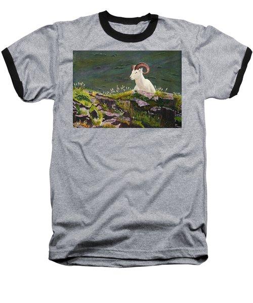 Denali Dall Sheep Baseball T-Shirt by Mike Robles