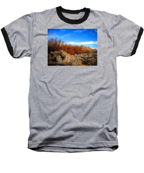 Baseball T-Shirt featuring the photograph Desert Colors by Marilyn Diaz