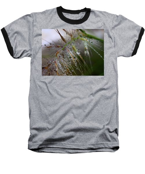 Dew On Fountain Grass Baseball T-Shirt by Joe Schofield