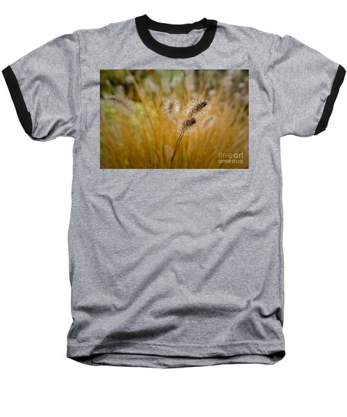 Dew On Ornamental Grass No. 4 Baseball T-Shirt