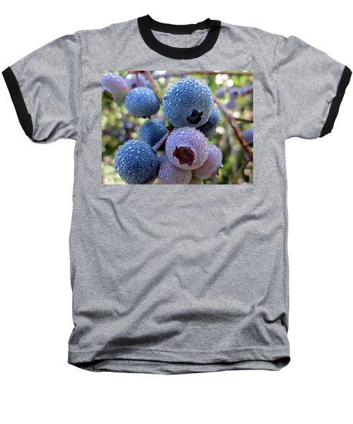 Dewy Blueberries Baseball T-Shirt by MTBobbins Photography