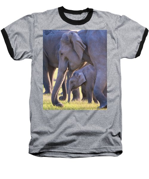 Dhikala Elephants Baseball T-Shirt by David Beebe