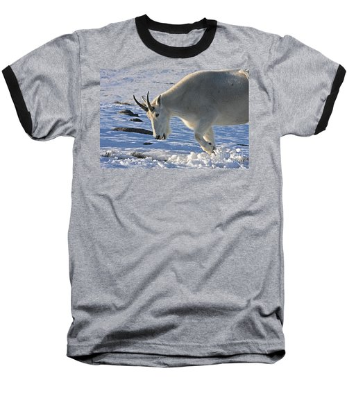 Digging For Dinner Baseball T-Shirt