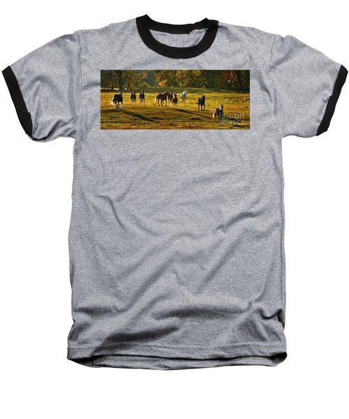 Dinner Bell Baseball T-Shirt