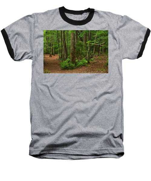 Diverted Paths Baseball T-Shirt