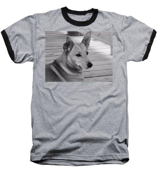 Dog In Black And White One Baseball T-Shirt