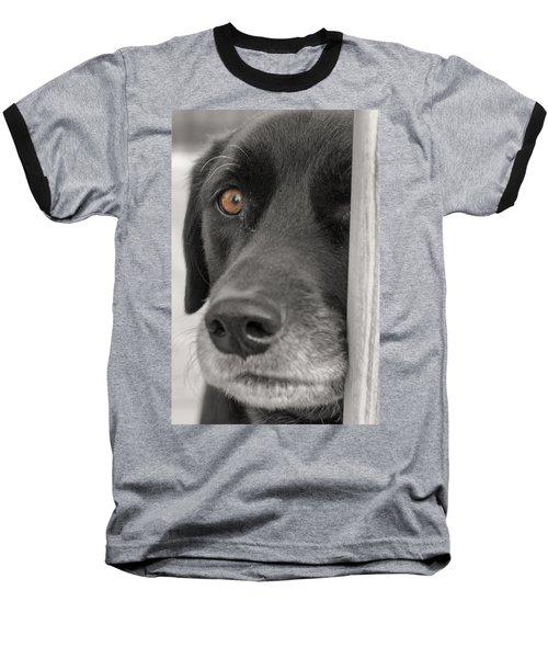 Dog Peek A Boo Baseball T-Shirt
