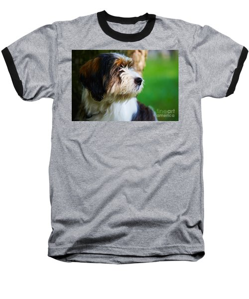 Dog Sitting Next To A Tree Baseball T-Shirt