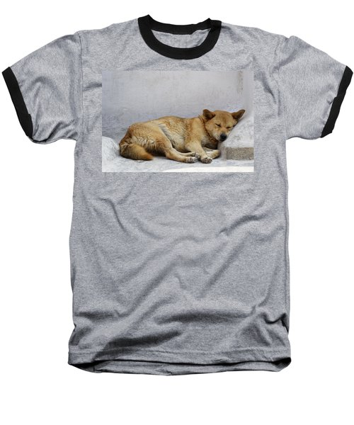 Dog Sleeping Baseball T-Shirt