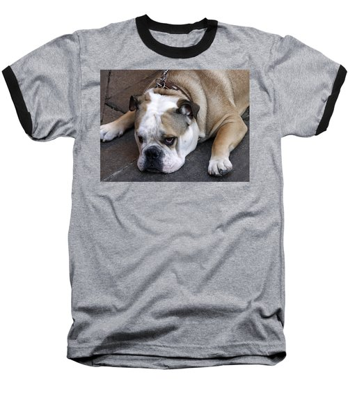 Dog. Tired. Baseball T-Shirt
