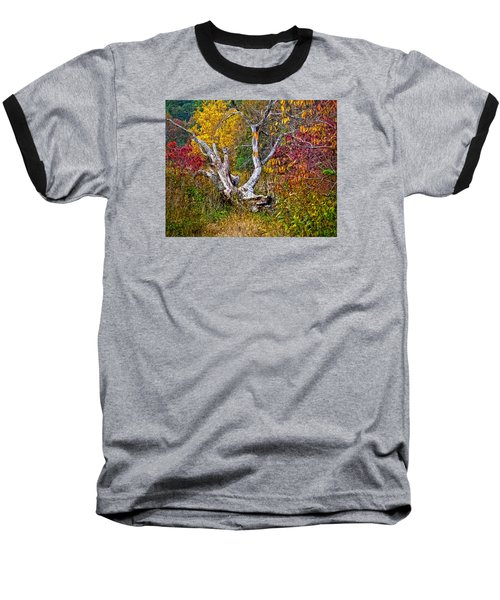 Baseball T-Shirt featuring the digital art Dog Tree by Mary Almond