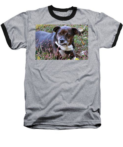Dogg Baseball T-Shirt