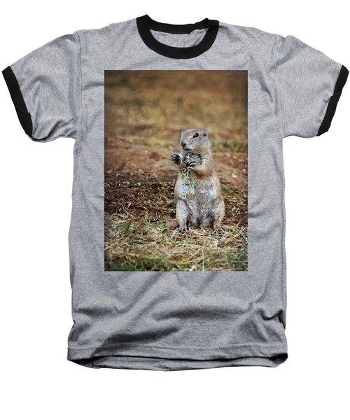 Doggie Snack Baseball T-Shirt