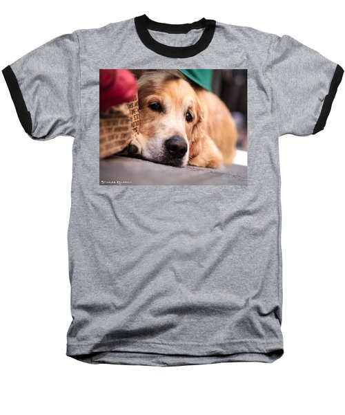 Baseball T-Shirt featuring the photograph Dog's Sorrow by Stwayne Keubrick