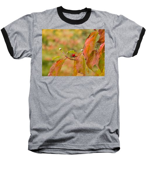 Baseball T-Shirt featuring the photograph Dogwood Berrie by Nick Kirby