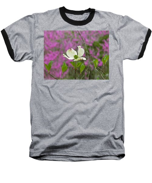 Dogwood Bloom Against A Redbud Baseball T-Shirt
