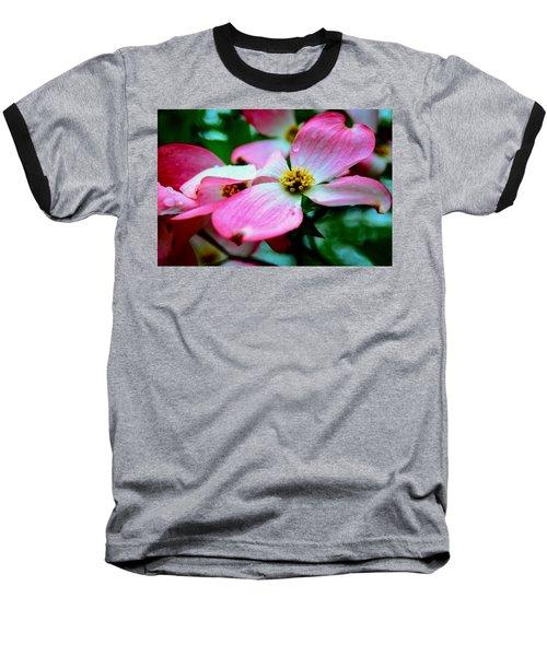 Dogwood Dew Baseball T-Shirt