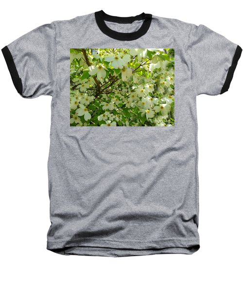 Baseball T-Shirt featuring the photograph Dogwood Kissed By The Sun by Becky Lupe