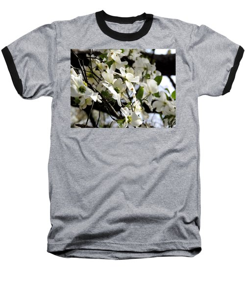 Dogwoods In The Spring Baseball T-Shirt by Kim Pate