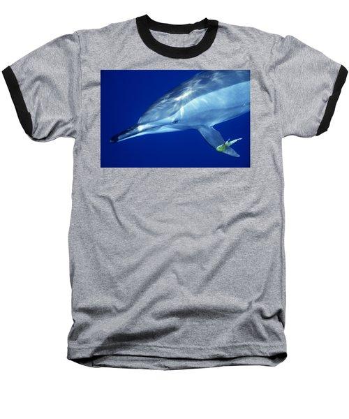 Dolphin Baseball T-Shirt