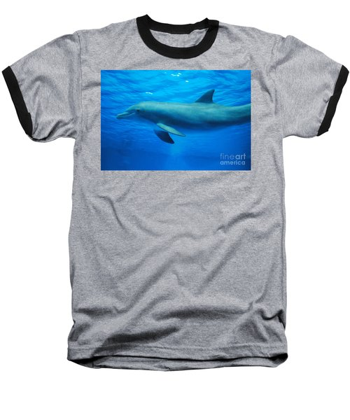 Dolphin Underwater Baseball T-Shirt by DejaVu Designs