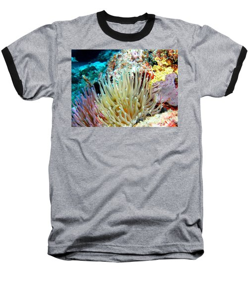 Baseball T-Shirt featuring the photograph Double Giant Anemone And Arrow Crab by Amy McDaniel