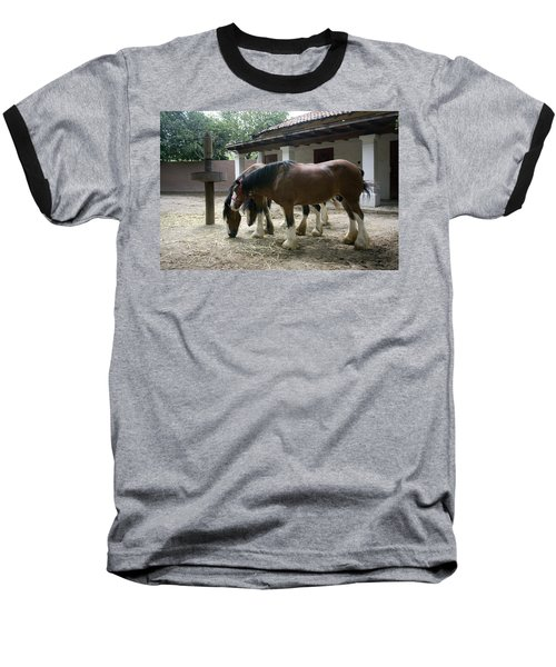 Baseball T-Shirt featuring the photograph Draft Horses by Lynn Palmer