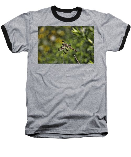 Dragonfly Baseball T-Shirt by Daniel Sheldon