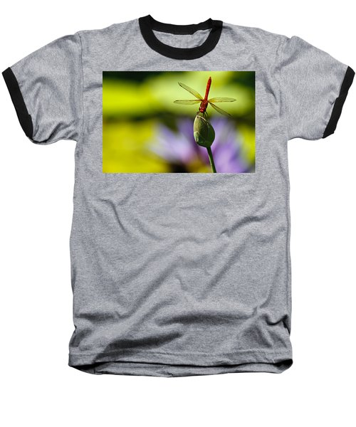 Dragonfly Display Baseball T-Shirt