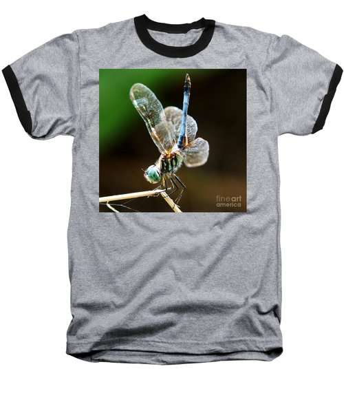Dragonfly Headstand Baseball T-Shirt by Kim Pate