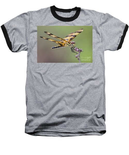 Baseball T-Shirt featuring the photograph The Halloween Pennant Dragonfly by Olga Hamilton