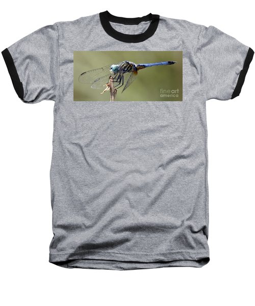 Dragonfly Smile Baseball T-Shirt