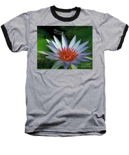 Dragonlily Baseball T-Shirt by Larry Nieland