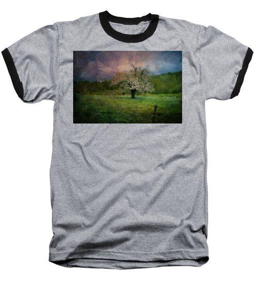 Dream Of Spring Baseball T-Shirt