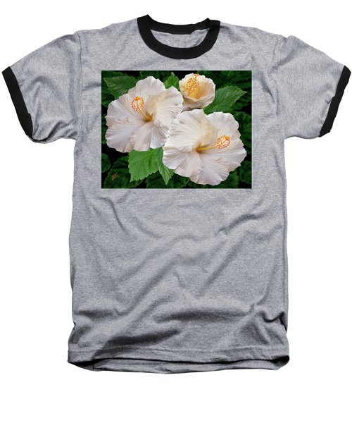 Dreamy Blooms - White Hibiscus Baseball T-Shirt by Ben and Raisa Gertsberg
