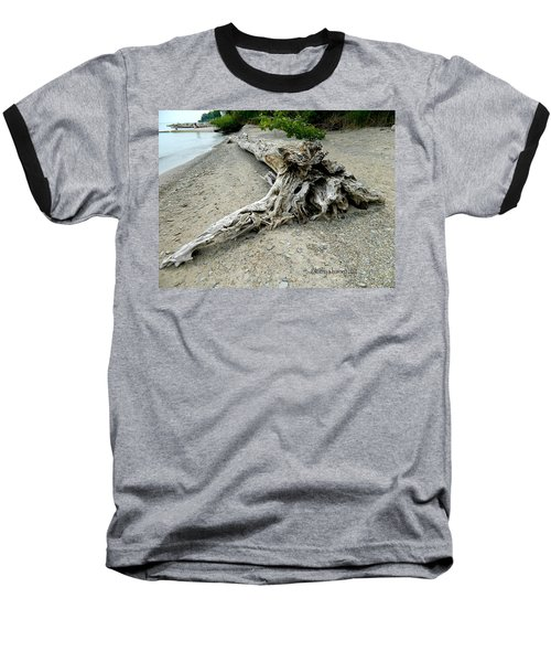 Baseball T-Shirt featuring the photograph Driftwood At Lake Erie by Kathy Barney