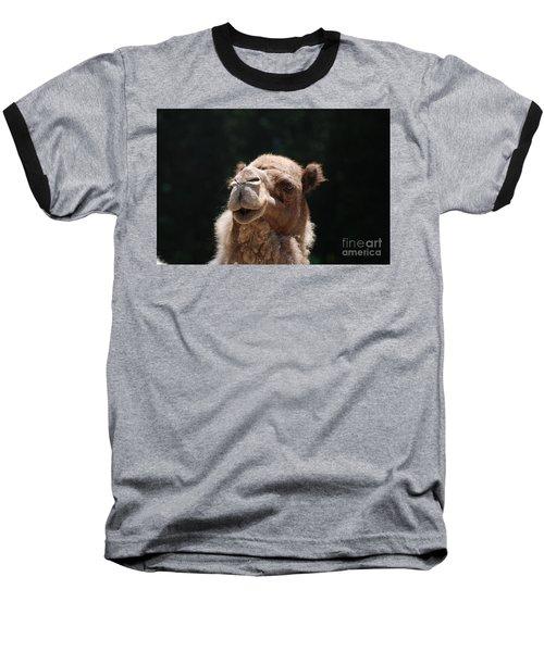 Dromedary Camel Face Baseball T-Shirt