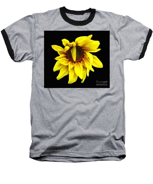 Droops Sunflower With Oil Painting Effect Baseball T-Shirt by Rose Santuci-Sofranko
