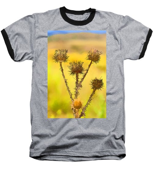 Dry Brown Thistle Baseball T-Shirt