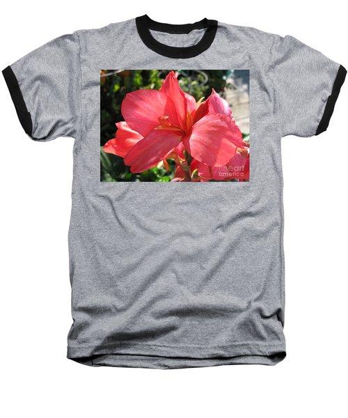 Dwarf Canna Lily Named Shining Pink Baseball T-Shirt by J McCombie