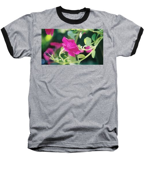 Baseball T-Shirt featuring the photograph Early Morning Petunias by Alan Lakin