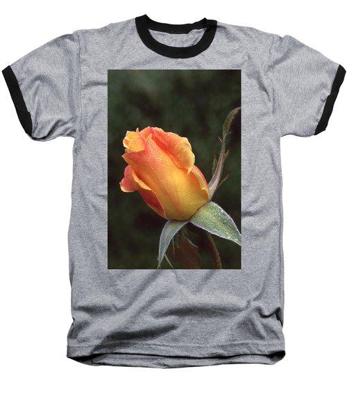 Early Morning Rosebud Baseball T-Shirt